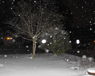Snow at night1
