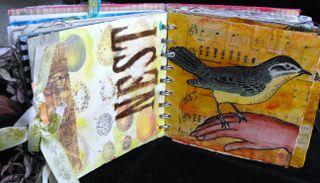 Bird page6