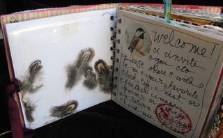 Bird page1