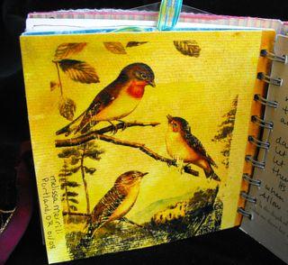 Bird page2