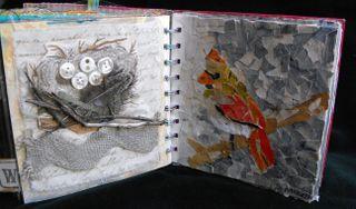 Bird page13