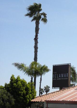 Belamar2