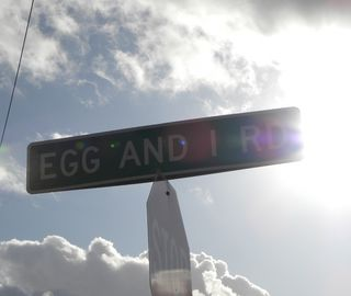 Egg and i rd