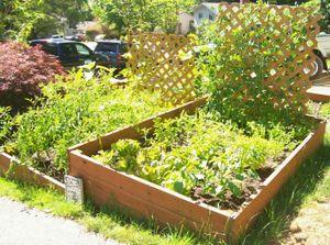 Gardeninjuly