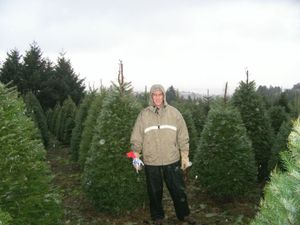Christmas_tree_farm