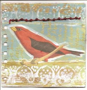 Bird_round_robin_2