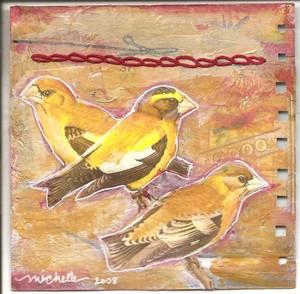 Bird_round_robin_3