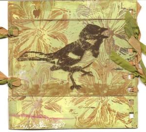 Bird_round_robin_5