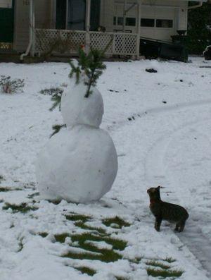 Atti_and_the_snowman