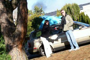 Christmas_tree_on_car