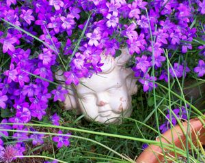 Purple_cherub1