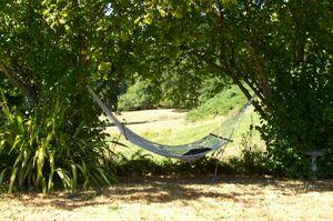 The_hammock